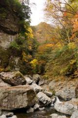 紅葉と滝(みたらい渓谷)4