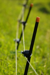 水田を守る柵