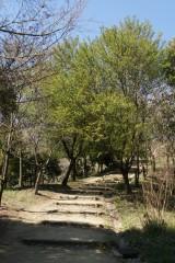 甘樫丘,展望台まで 階段