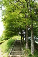 公園 散歩道・階段1