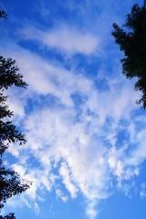 雲のかかった青空(青強調)