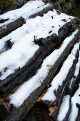 雪の積もった材木