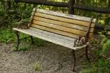 古い木製のベンチ1