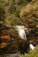 紅葉と滝(みたらい渓谷)2