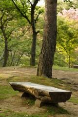 木製のベンチ1