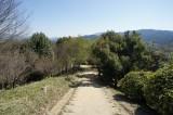 甘樫丘展望台の階段