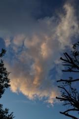 朝方の曇り空